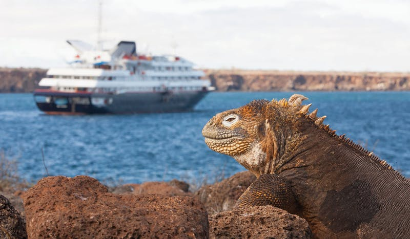 Experience the Galápagos In Elegance