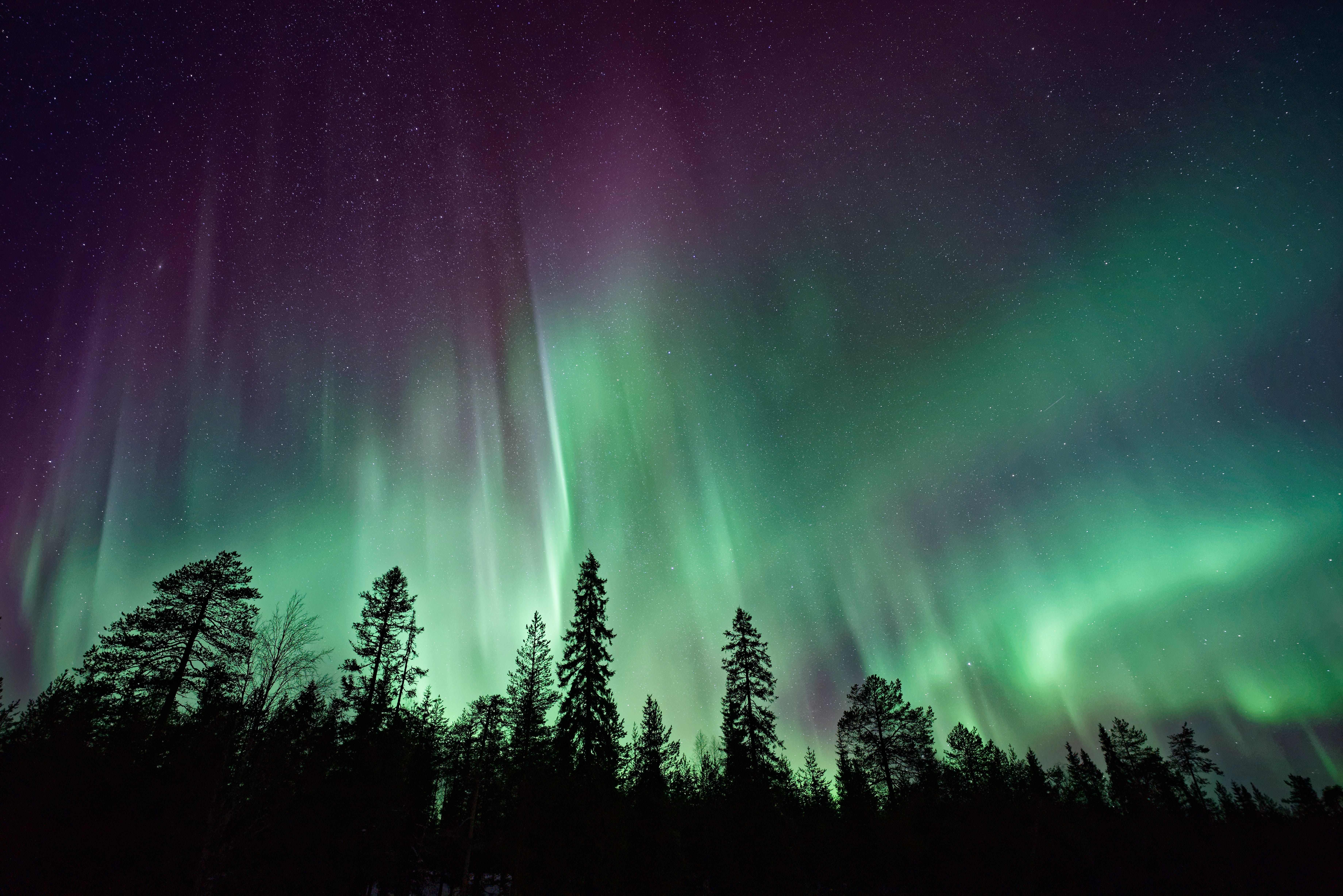Explore the Northern or Southern Lights - Photo by Vincent Guth