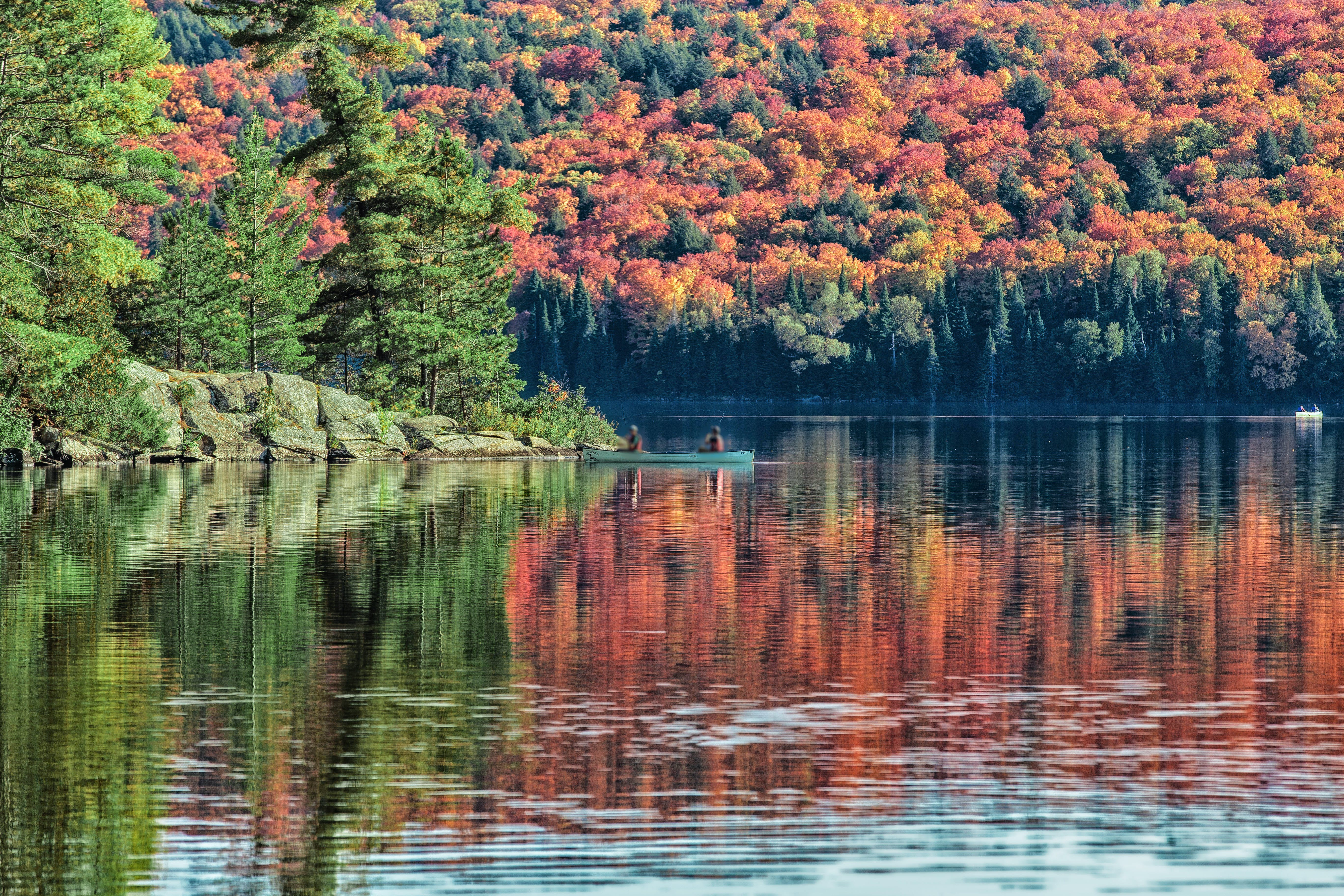 Breathtaking foliage views will follow you on your journey.
