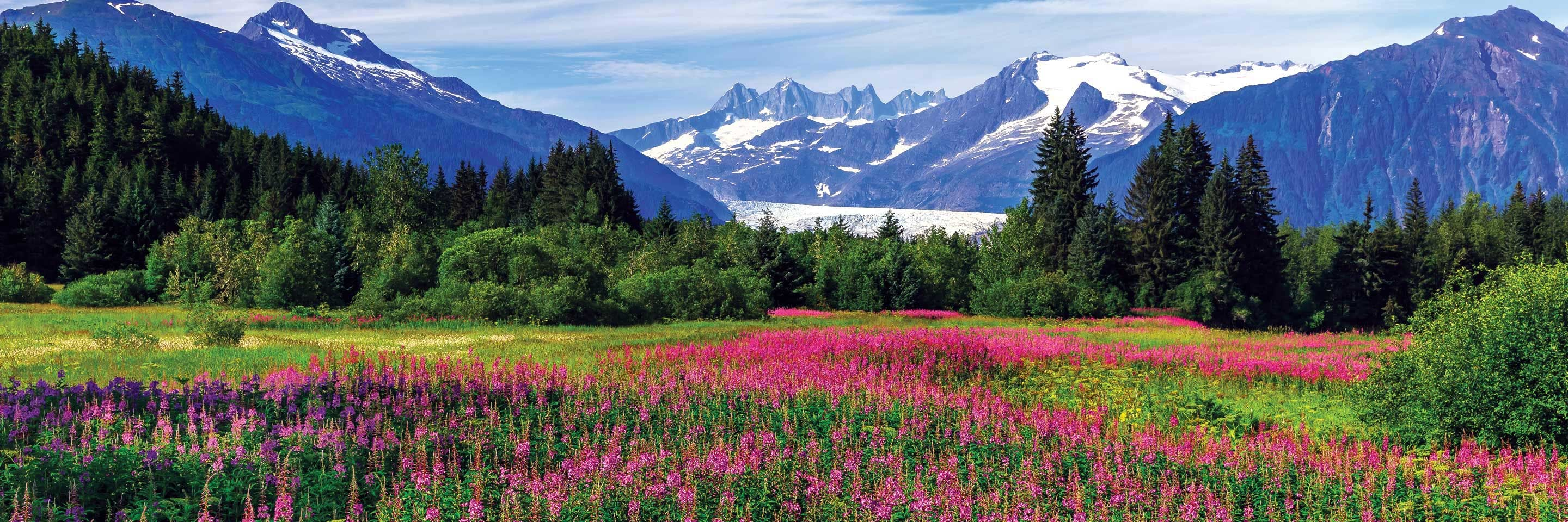 Alaska Small Ship Cruises & Expeditions for Adventure Travel