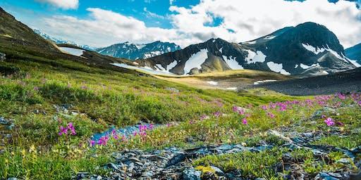 All Three OLife Perks in Alaska