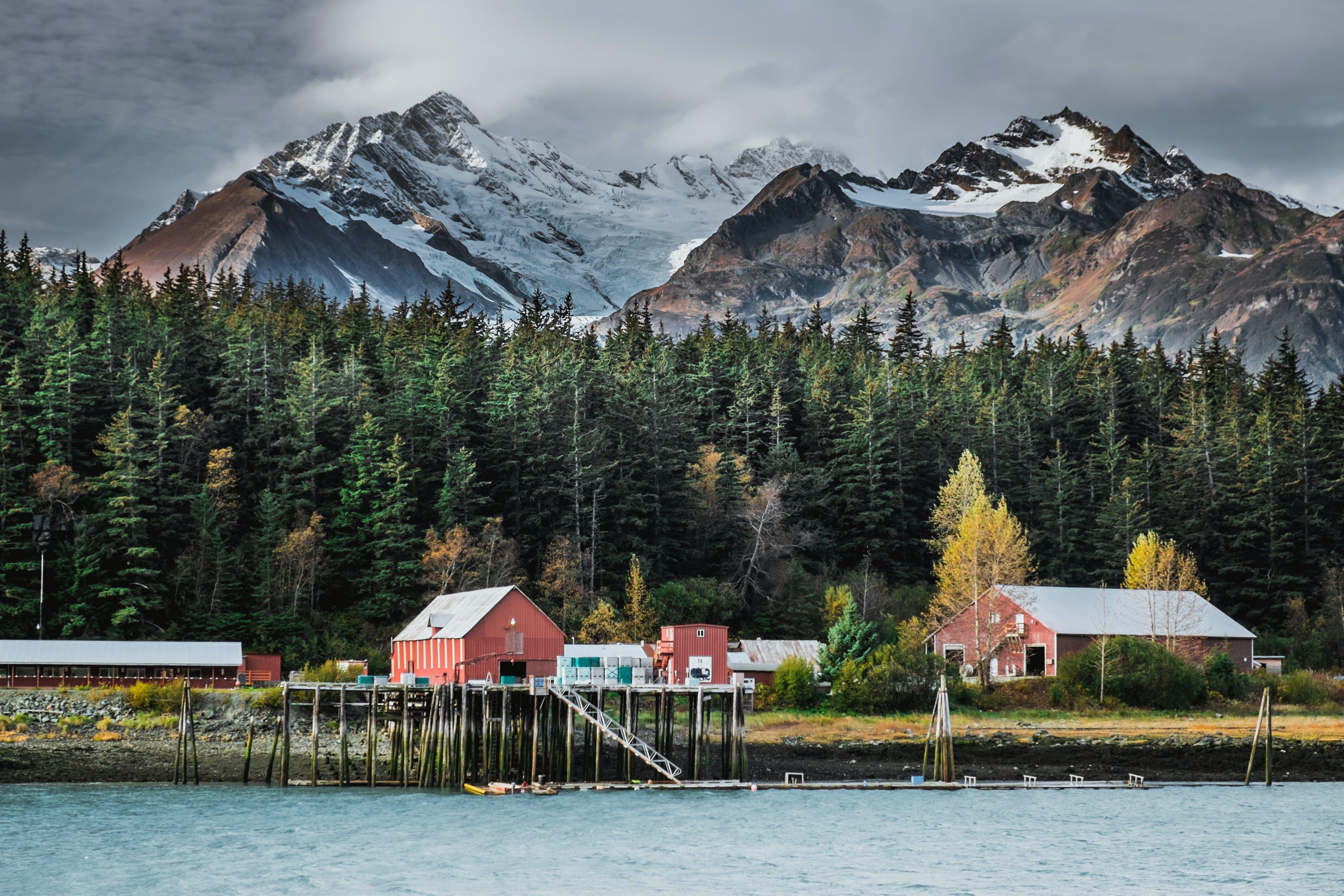 Kids Sail Free to Alaska with Oceania