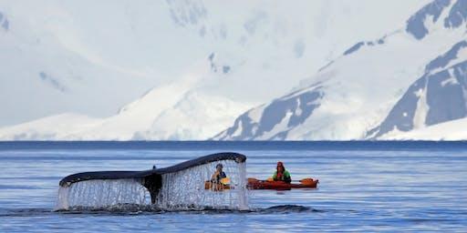 Fly Free to Antarctica with Hurtigruten