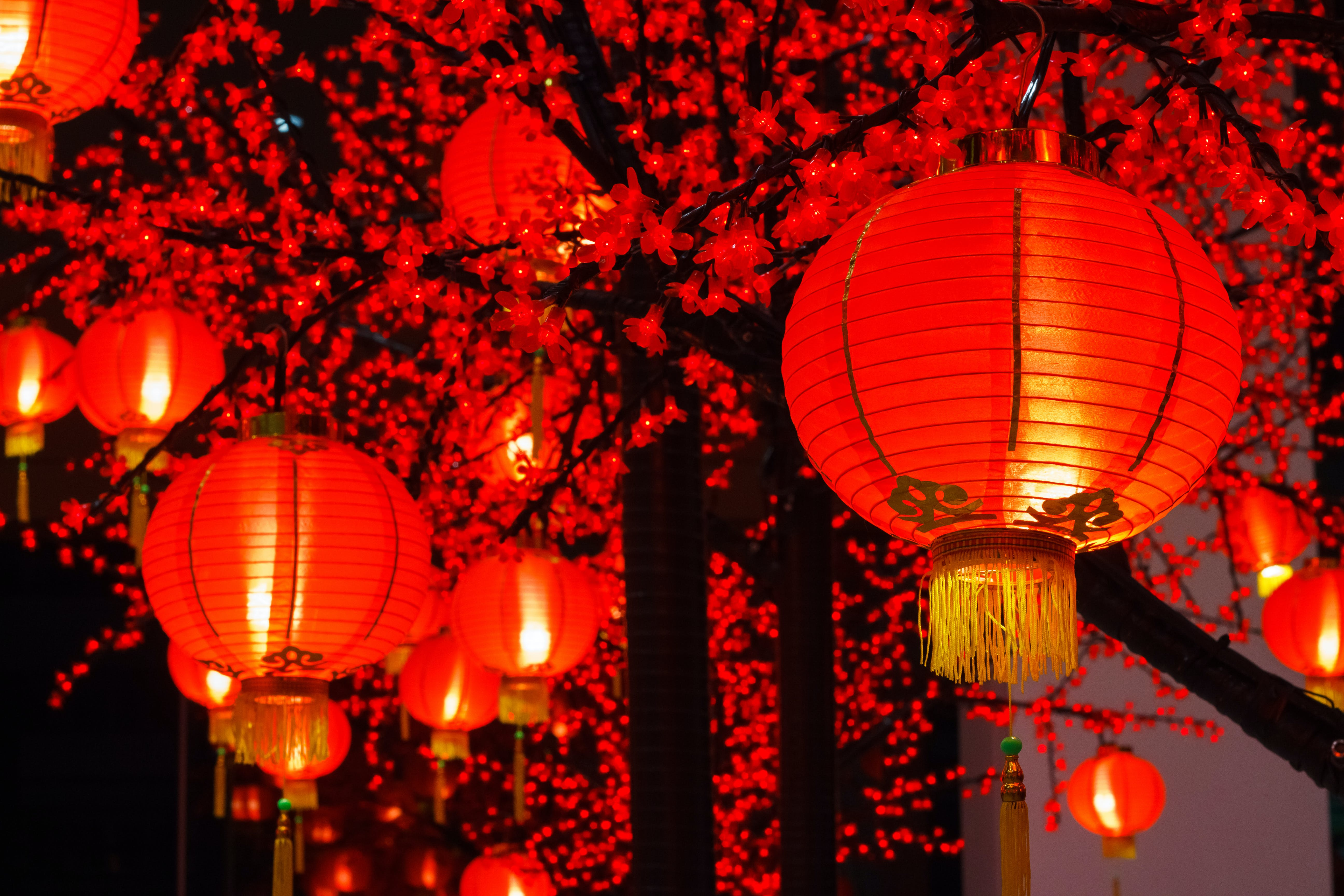 Ring in the New Year with Chinese lanterns, dragons, fireworks and more!
