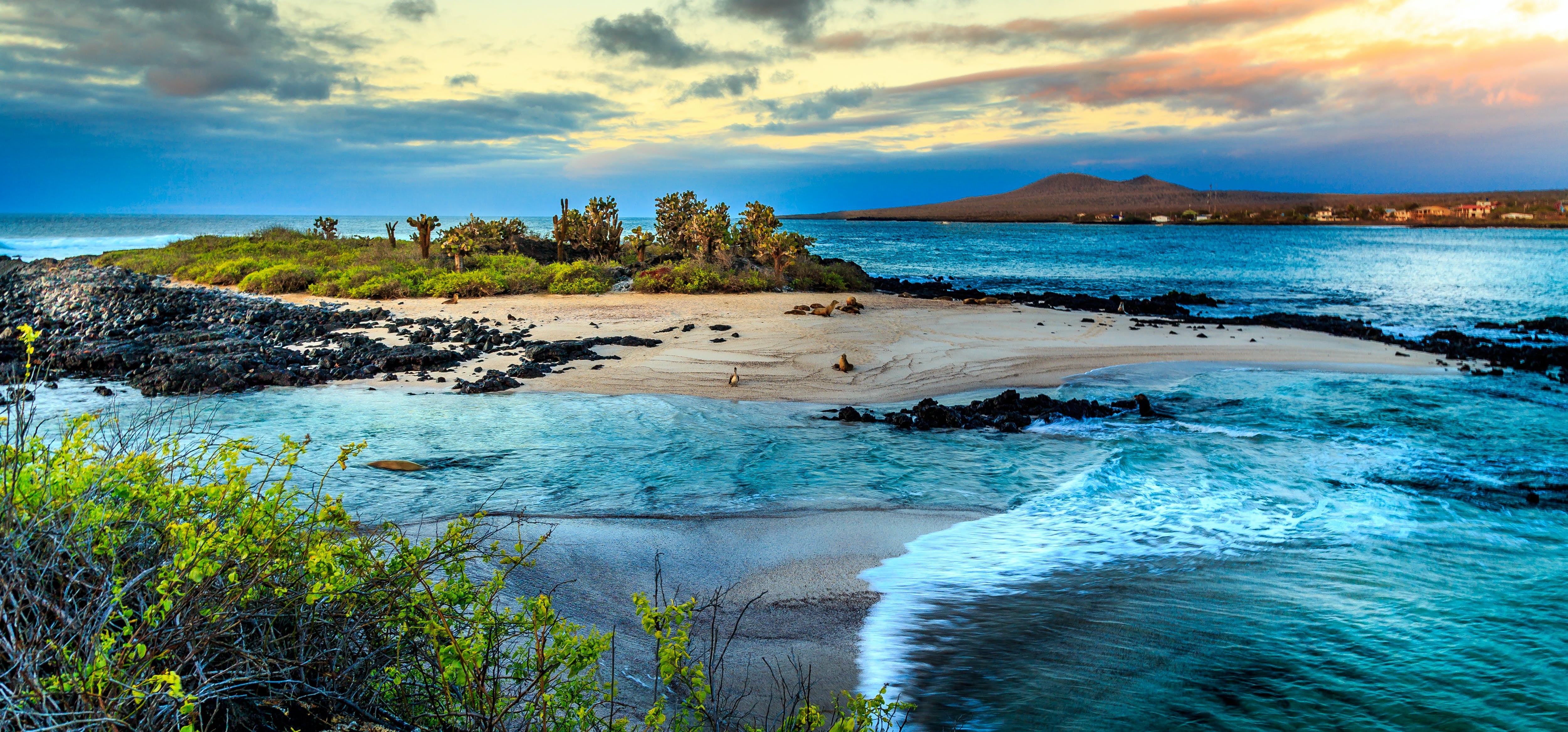 Discover the Galápagos Islands, one of the world's most famous and pristine natural laboratories.