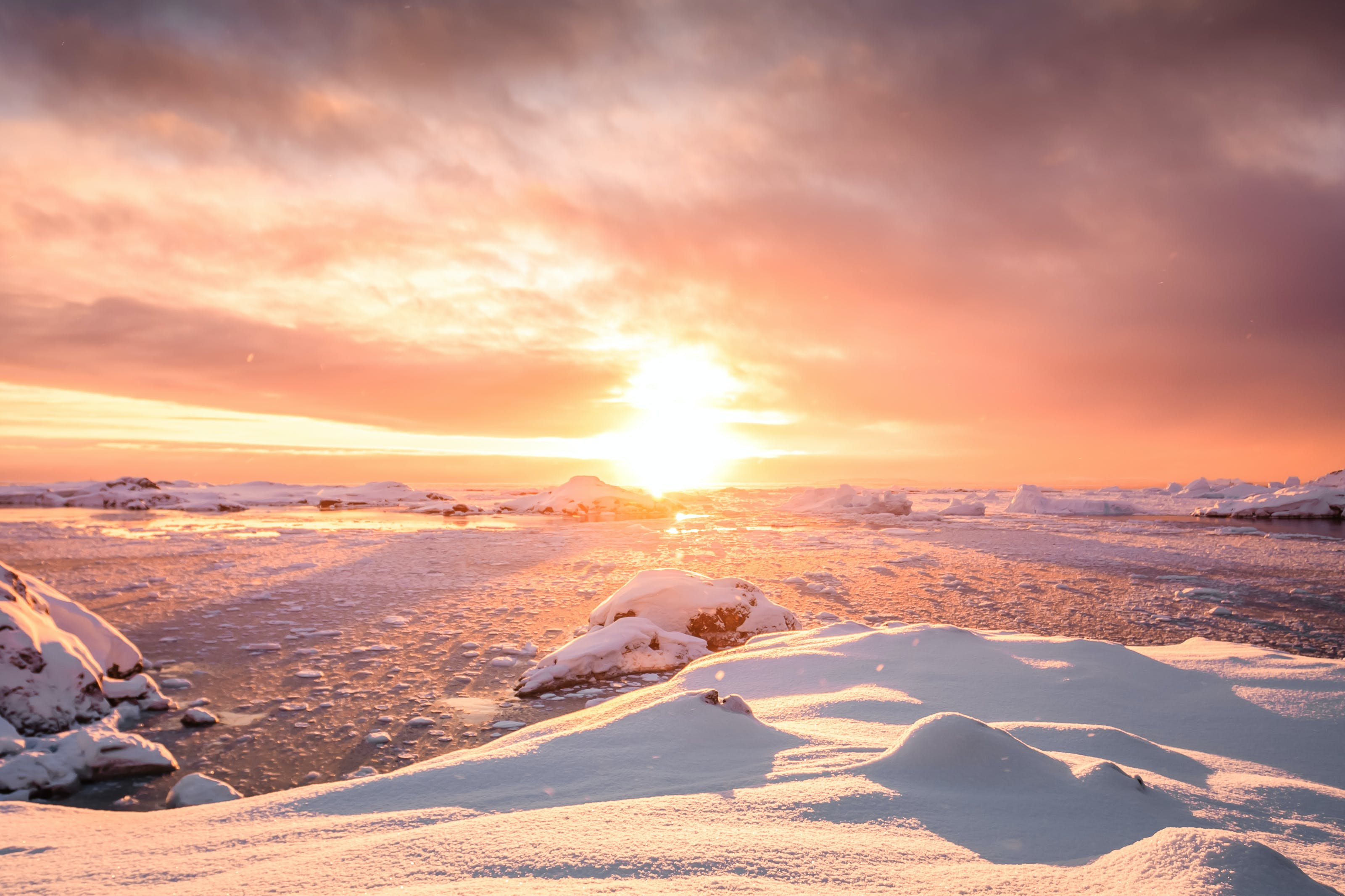 Cruise season in Antarctica is suprisingly more pleasant and more scenic than you'd think.